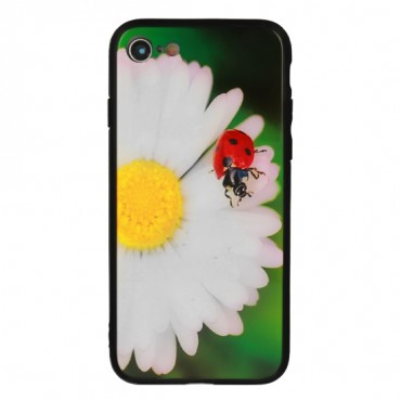 Apple Iphone XR Vennus Glass silikoonraam plastiktagusega LadyBird